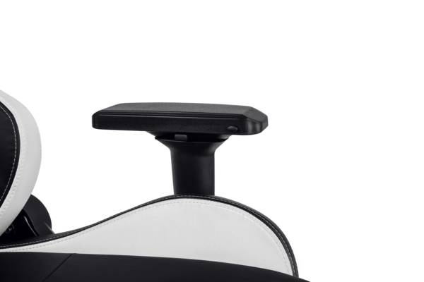 Игровое кресло 2E Gaming GC24 Black/White